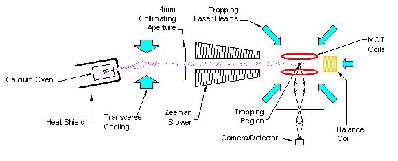 Argonne Physics Division Atom Trap Trace Analysis